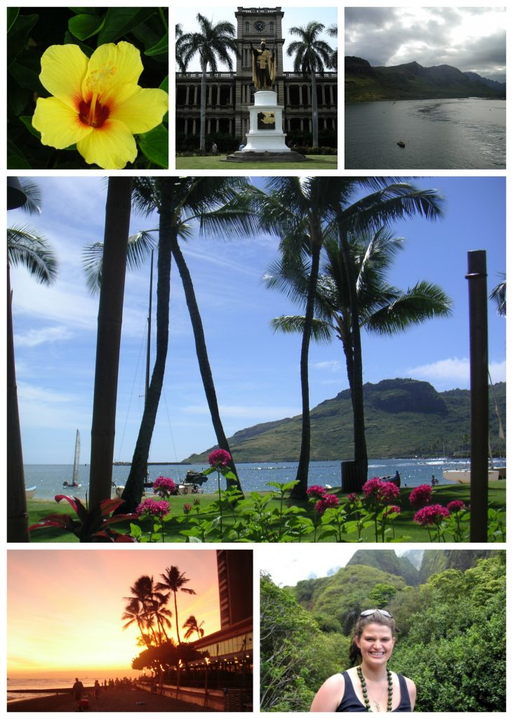 Hawaii Collage
